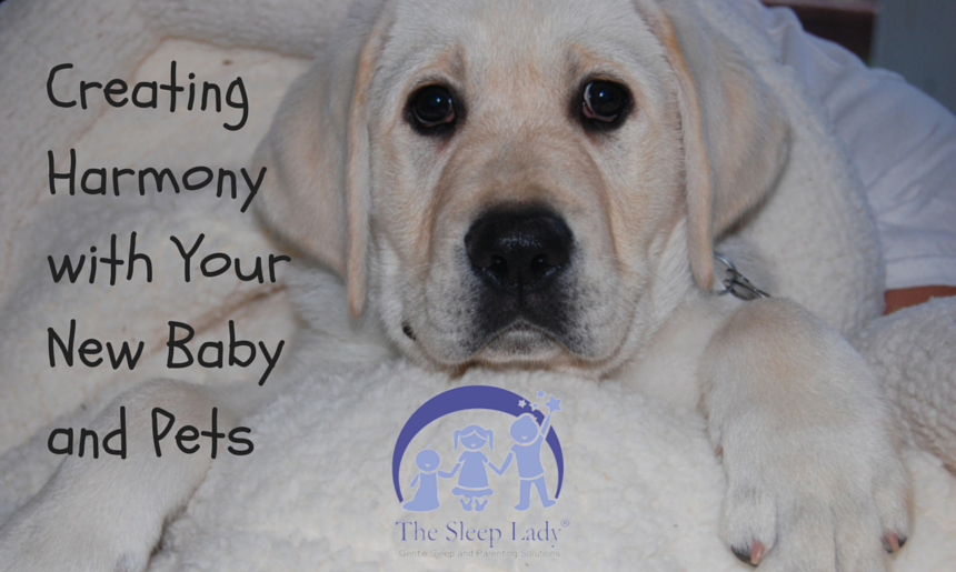 Creating Hrmony with Your New Baby and
