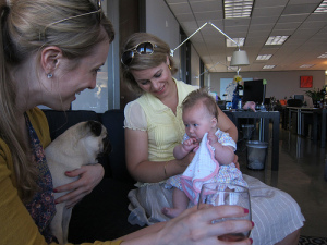 baby meets pet